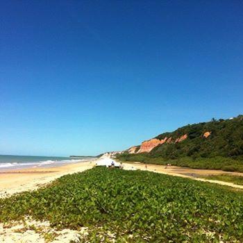 Criação de sites profissionais na Bahia